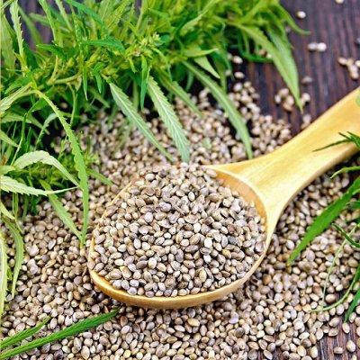 ❤ППшницам, вегетарианцам, сыроедам. Продукты для стройности — Конопля, расторопша, рыжик. Полезные семена, орехи и семечки — Орехи, сухофрукты, чипсы