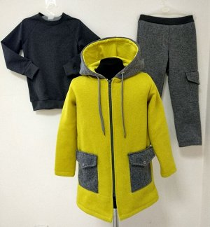 Арт. 3ПСБ/4/2 Комплект для мальчиков пальто+брюки+свитшот. Размер с 86-140
