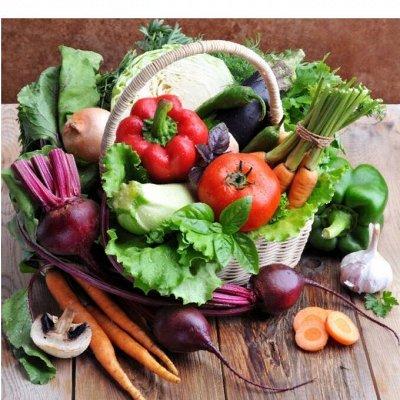 ✔️Овощной бум. ✔️Приправы, овощные смеси, каши, чаи, супы.  — Сушёные овощи, овощные смеси. Панировка . Чипсы — Быстрое приготовление