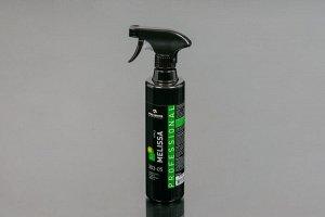 Освежитель воздуха аэрозольный 0,5л. Melissa Apple Pro Brite 303-05