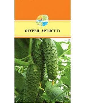 Овощи Высокоурожайный, партенокарпический, раннеспелый гибрид,50 дней от всходов. Куст мощный. Плодоношение дружное. В одном узле формируется 3-4 среднебугорчатых корнишона, длиной 7-9см. Плоды цилинд