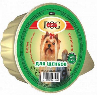 Корма и наполнители из Тайланда — Собаки — Для собак