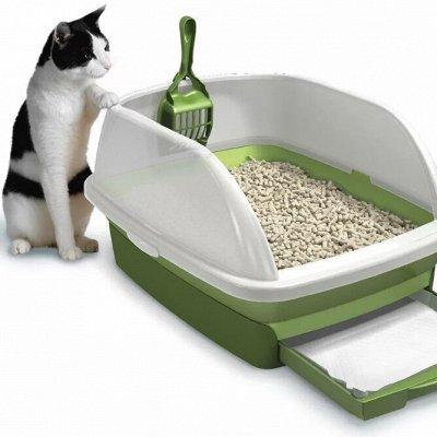 Domosed.online - Товары для животных — Наполнители! Есть АКЦИИ и НОВИНКИ! — Туалеты и наполнители
