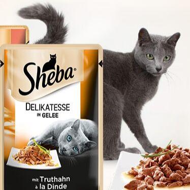 Domosed.online - Товары для животных   — Влажный корм для котов SHEBA. Э — Корма