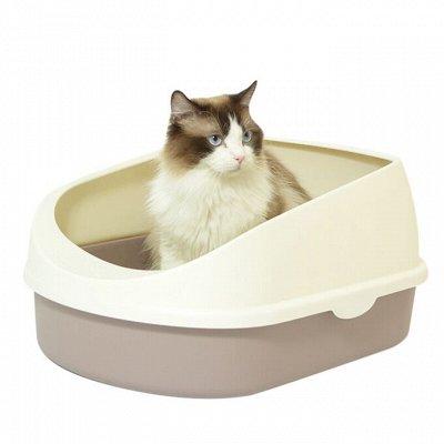 Domosed.online - Товары для животных — Туалеты для кошек — Туалеты и наполнители