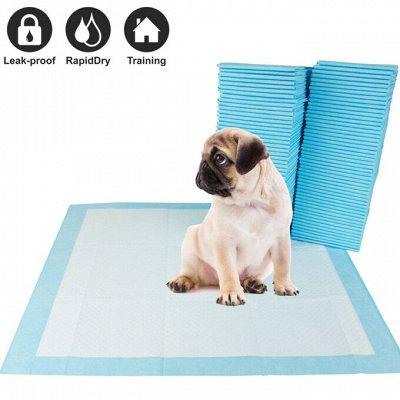 Domosed.online - Товары для животных — Пеленки и подгузники для животных — Уход