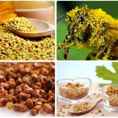 ✿Натуральный Мед✿ ヅ ❣ Все для иммунитета ❣️ ❣ — Все для иммунитета! Пыльца +Забрус! + Соты — Мед