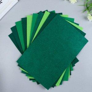 Набор  фетра (мягкий)  1 мм 20х30 см 10 листов цв. зеленый ассорти