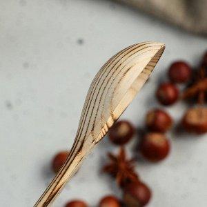 """Ложка деревянная, обожженная """"Столовая"""", 16 х 4 см, массив ясеня"""