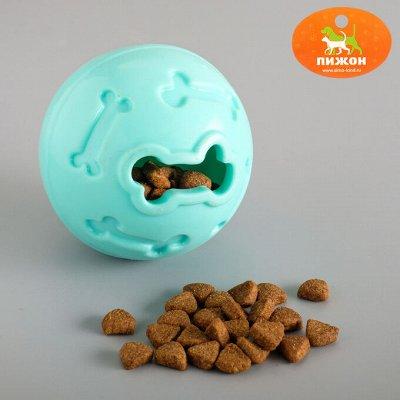 Пижон - для собак - 21 — Развивающие игрушки и игровые комплексы — Аксессуары и одежда