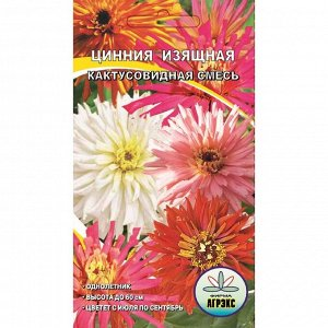 Семена цветов Цинния кактусовидная смесь, О, 0,3 г