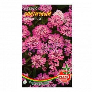 Семена цветов Иберис зонтичный розовый, О, 0,04 г