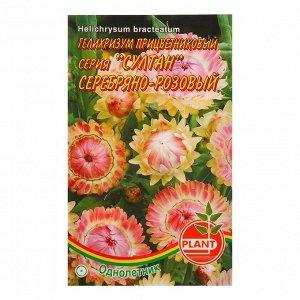 Семена цветов Гелихризум Серебряно - розовый, О, 0,05 г