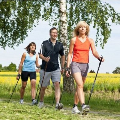 Спорт для всех - плавание, туризм, большое поступление — Палки для  скандинавской ходьбы — Спортивный инвентарь