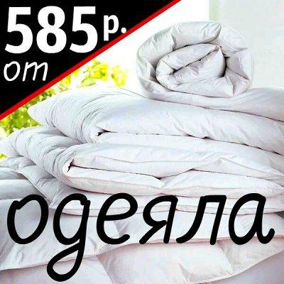 💫Любимый текстиль! Суперкачество! Новые яркие расцветки!💫 — Одеяла. Новинки! — Одеяла