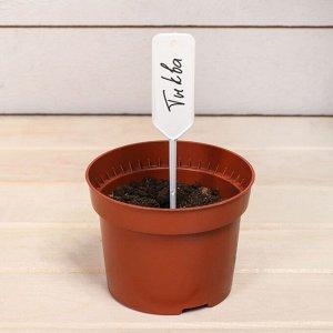 Ярлыки садовые для маркировки, 15 см, с карандашом, набор 20 шт., пластик