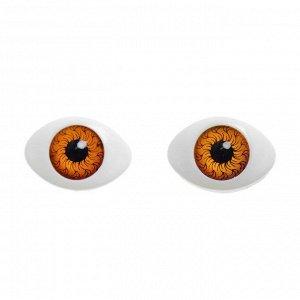 Глаза, набор из 8 шт., размер радужки — 12 мм, цвет карий