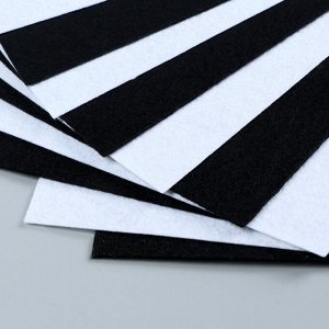 Набор  фетра (жесткий)  1 мм 20х30 см 10 листов цв. белый,черный