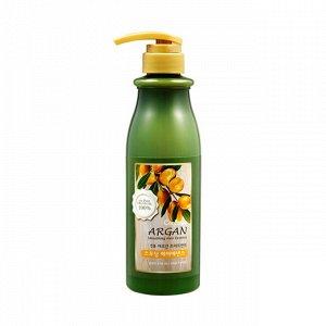 Argan Treatment Smoothing Hair Essence Эссенция для гладкости волос с аргановым маслом 500ml