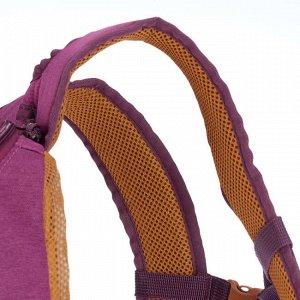 Рюкзак для походов на природе – NH500 10 литров QUECHUA