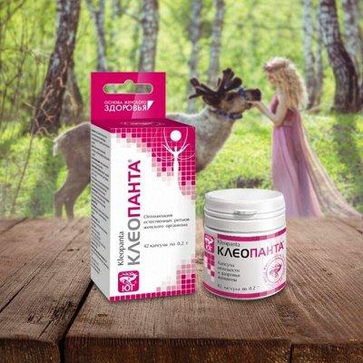 • Сибирские органические продукты • Новые супердобавки•    — Иммуностимуляторы, пробиотики — Бакалея