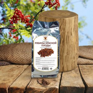 Рябина красная Sorbus sibirica, плоды
