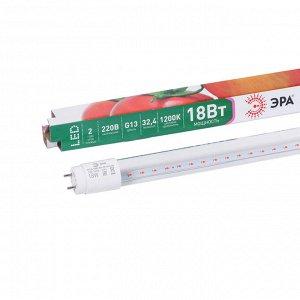 Лампа для растений, сине-красный спектр, 18 Вт, Т8 1200 мм, 32,4 мкмоль/с, цоколь G13, «ЭРА»