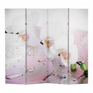 """Ширма """"Орхидея и капли воды"""", двухсторонняя, 200 ? 160 см"""