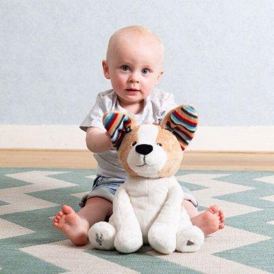 Круги SWITRAINER - учимся плавать с 3-х месяцев! -39 — Лучший сон для детишек и их родителей! Новинки! — Аксессуары
