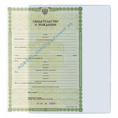Обложка для каждой страницы паспорта. Папки для документов — ДЛЯ ЛИЧНЫХ ДОКУМЕНТОВ — Домашняя канцелярия