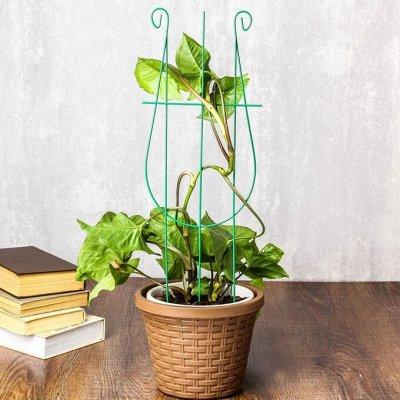 🌷 Кашпо, горшки, грунт - всё для домашних цветов и сада 🌷 — Шпалеры для комнатных растений — Кашпо и горшки