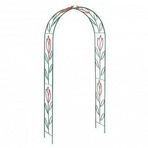 Арка садовая, разборная, 230 ? 125 ? 36.5 см, металл, зелёная, «Тюльпан»