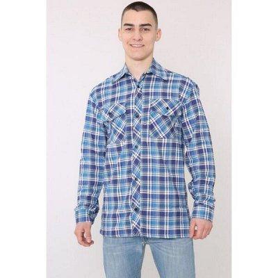 Cotton и Silk - фабрика домашнего текстиля для всей семьи — Мужское, Рубашки — Рубашки