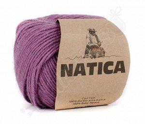 NATICA (1778)