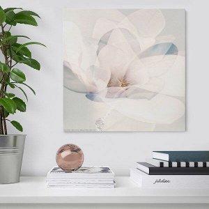 FRIDENE ФРИДЕНЭ Картина, цветок30x30 см