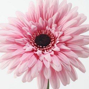 СМИККА Цветок искусственный, Гербера, розовый, 50 см