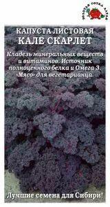 Капуста листовая Кале Скарлет F1 ЦВ/П (Сотка) 0,3гр позднеспелый
