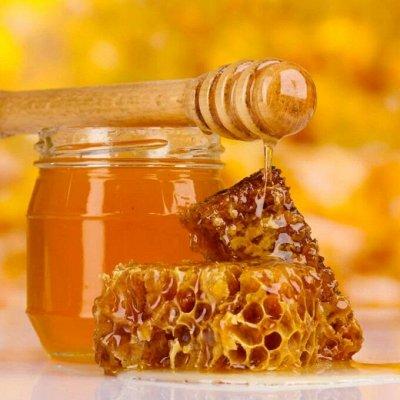 Лазовский вкусный мёд  для Вас — Мёд вкусный — Мед