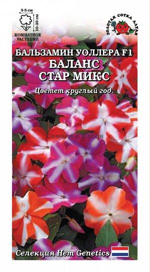 Цветы Бальзамин Уолера Баланс Стар Миск ЦВ/П (Сотка) комнатное