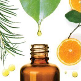 •Сибирские органические продукты • Новинки от 10 мая! — Эфирные и косметические масла — Пищевые добавки