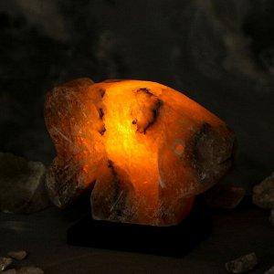"Соляная лампа ""Рыбка"", цельный кристалл, 15 см, 2,7 кг."