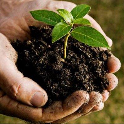 🌱БИОГУМУС-3. Лучшее универсальное органическое удобрение