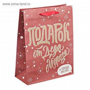 Пакет крафтовый вертикальный «Подарок за хорошее поведение», 18 ? 23 ? 8 см