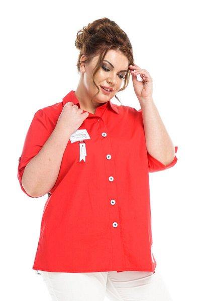 Леди Мари - 165 — Рубашки — Рубашки и блузы