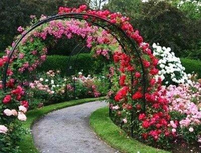 Полезные мелочи! Садоводам и огородникам! 25  — Арки, решетки для вьющихся растений — Садовый декор