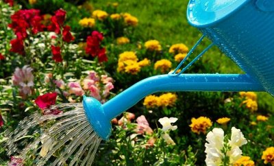 Полезные мелочи! Садоводам и огородникам! 24 — Лейки, рукомойники, ведра пластмассовые — Садовый инвентарь