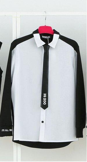 Стильная рубашка с кожаным галстуком