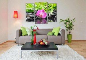 Орхидея Размер 100*70 см