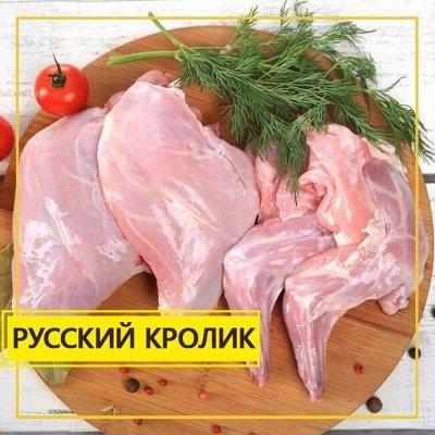 Мясная лавка! Курочка! Мясо! Овощи! Креветка от 329 рублей! — Русский Кролик — Кролик
