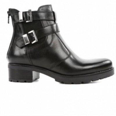 Итальянская обувь Nero Giardini - Доставка авиа! —  Сапоги, ботинки, кроссовки, туфли осень-зима — Кроссовки